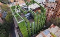 Tòa nhà 11 tầng xanh mát giữa 'rừng' bê tông